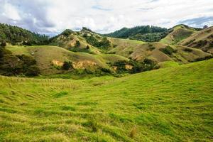 Northland heuvels