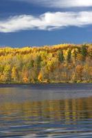 herfstkleuren op de oever van het meer, minnesota, VS.