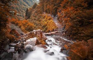 rotsachtige stroom foto