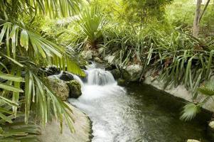 kleine stromende waterval