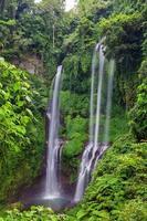 sekumpul watervallen in Bali, Indonesië foto