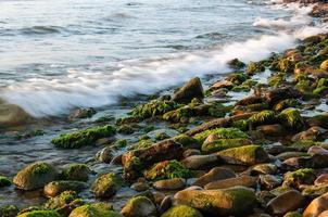 stenen op de oever