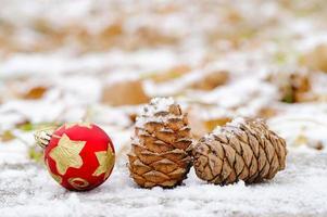 in afwachting van de mysterieuze, magische kerst. foto