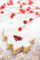 kerstboom koekje