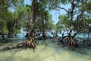 andaman eilanden van india foto