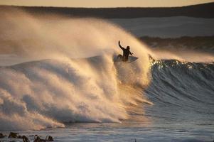 surfen in de gouden zon