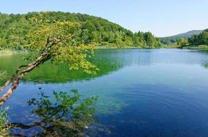 Nationaal park Plitvicemeren, Kroatië foto