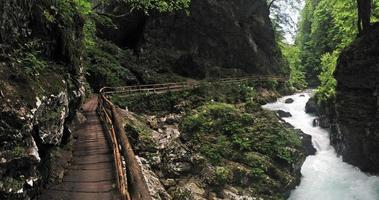 Vintgar-kloof bij Bled.
