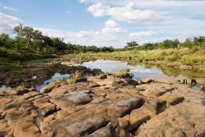 rivier in Kruger National Park