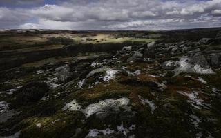 north york moors in spring, goathland, yorkshire, uk.
