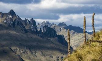 Cajas National Park, Andes Highlands, Ecuador