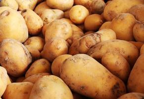 rauwe aardappelen in een stapel foto
