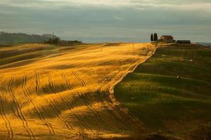 balen uit Toscane