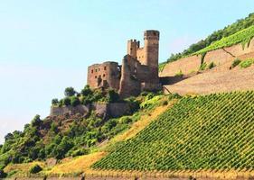 kasteel aan de Rijn