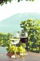 wijn en druiven foto