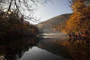 mist en herfst foto