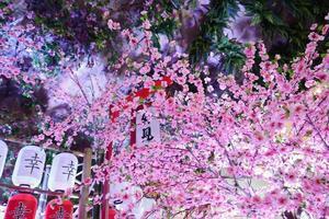 Japanse lantaarn. foto