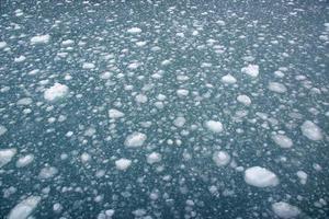 drijvend ijs foto
