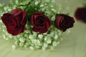 drie rode rozen met gipskruid