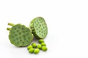 kelk, lotus zaden groen.