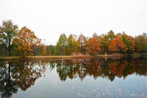herfst uitzicht foto
