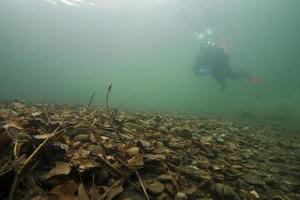 onderwater herfst