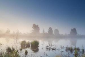 mistige kalme zonsopgang boven moeras