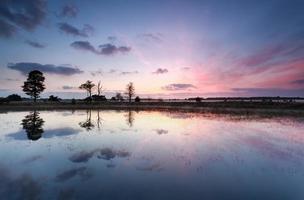 paarse zonsopgang reflecties in meer