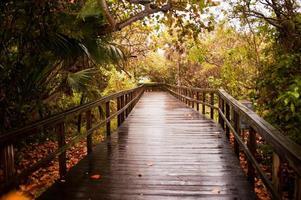 houten promenade na de regen