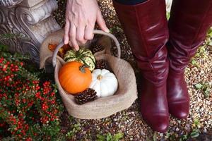 vrouw in rode laarzen mand met herfst kalebassen oppakken
