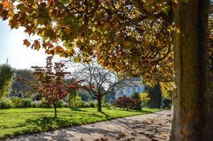 Parijse tuin in de herfst met zon. Parijs foto