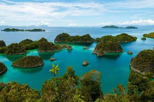 veel kleine groene eilanden die behoren tot het fam-eiland in de foto
