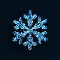 natuurlijke kristallen sneeuwvlok macro foto