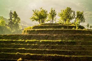 longji rijstterrassen