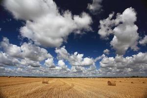 leg hooi op veld wolken zon