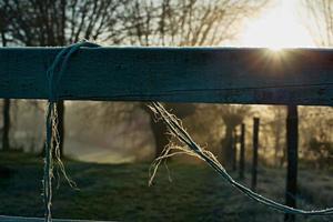 winterlandschap met houten hek met touwtje foto