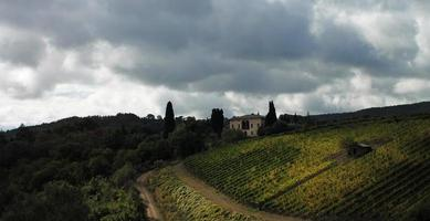 Toscaanse wijngaard