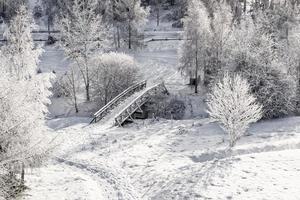 houten brug van bovenaf