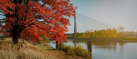 redzinski bridge, wroclaw, polen
