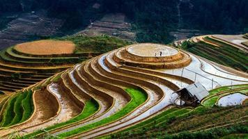 terrasvormige rijstveld foto