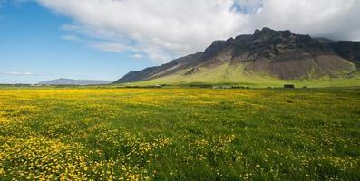 schiereiland Reykjanes in de zomer
