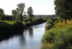 ropa rivier, wilgen en polders in jaslo