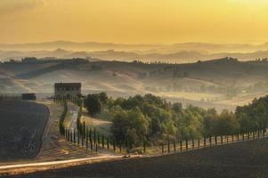 onderweg met de prachtige toscaanse cipres.