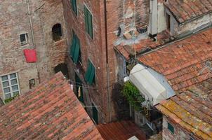 de oude daken.