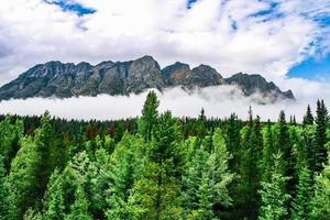 bergen bedekt met mist foto