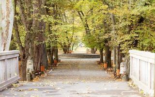 vintage foto van herfst park