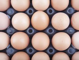 eieren paneel foto