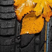 bladeren vallen op een autoband