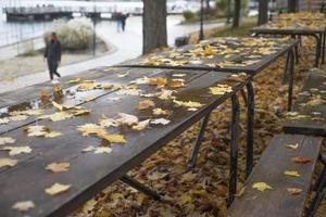 houten picknicktafel bedekt met gele natte herfstbladeren foto