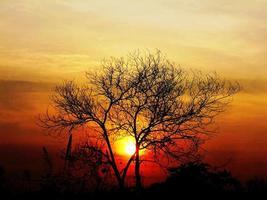 zonsopgang in het paradijs foto